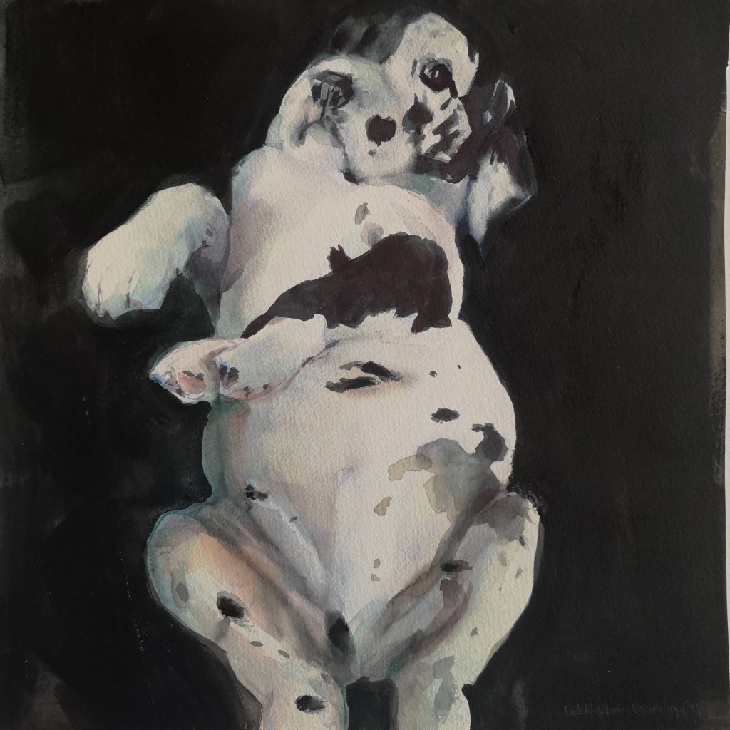 Little belly, watercolor, 30x30 cm