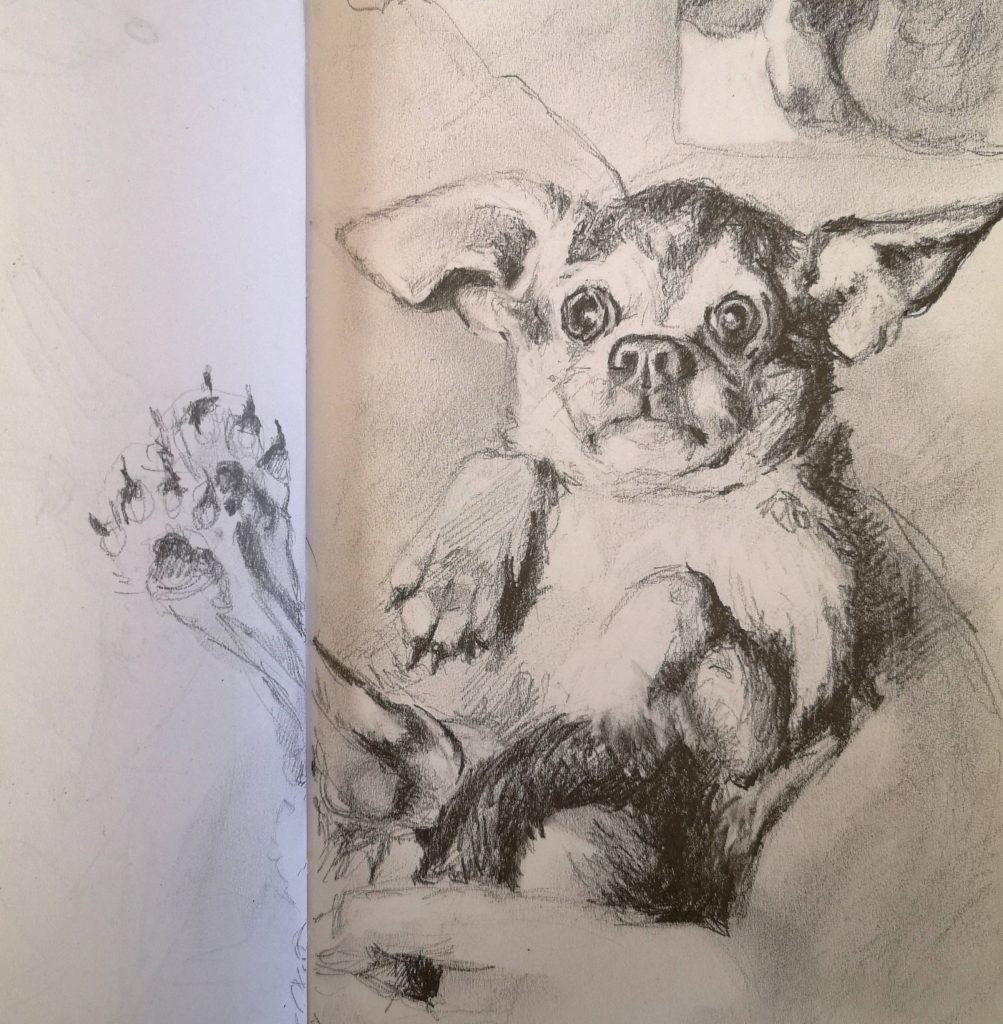 Little doggy, pencil, 15x15 cm