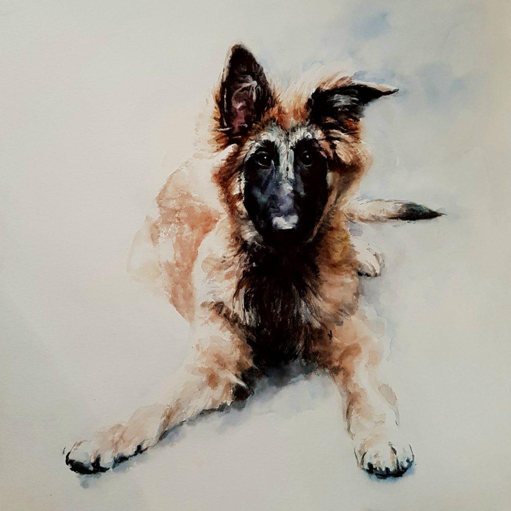 Lukai, watercolor, 30x30 cm