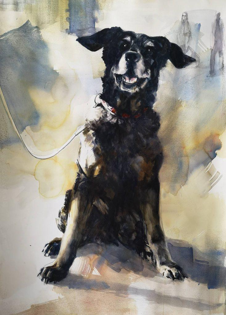 Oude hond aquarel 100x70 cm