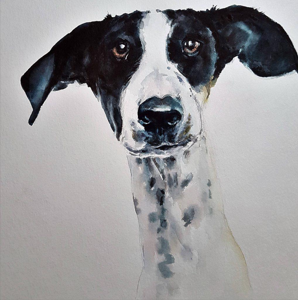 Pepe, watercolor, 30x30 cm