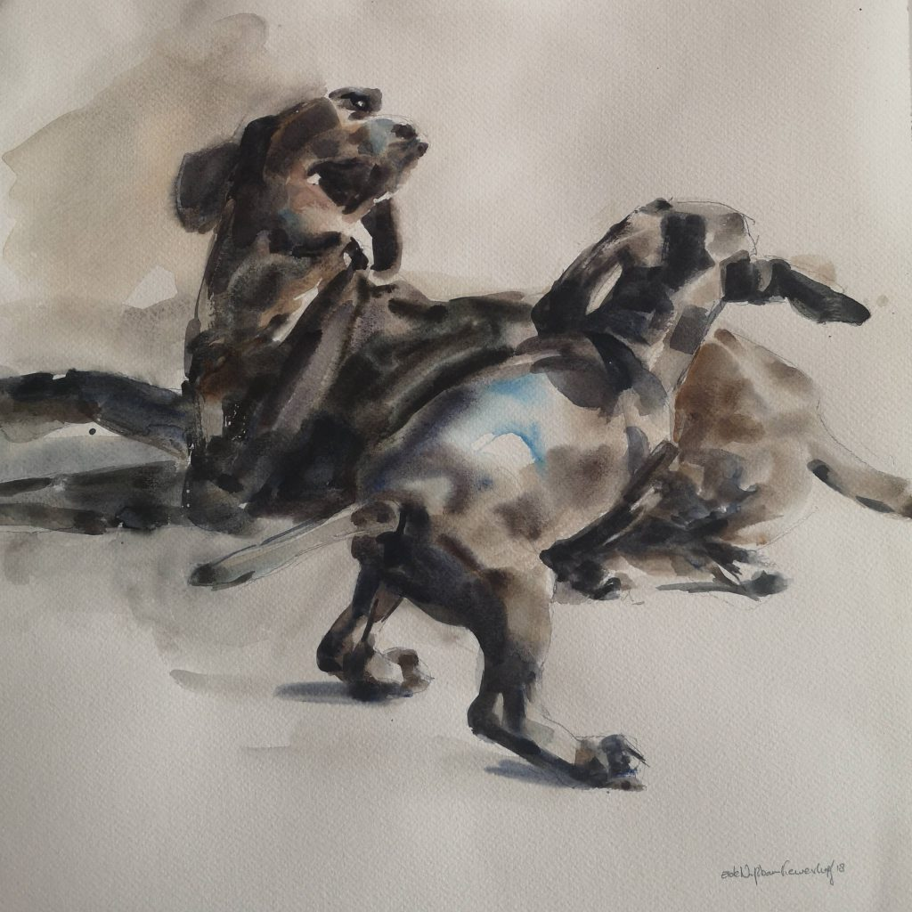 Playing dogs, watercolor, 30x30 cm