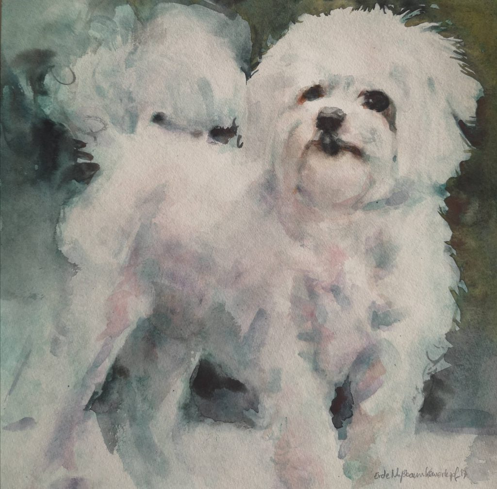 Ritchie, Mafers dog, watercolor, 30x30 cm